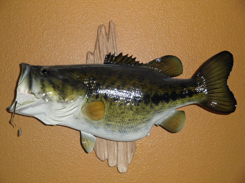 Who does the best replica? - Bass Fishing Forum